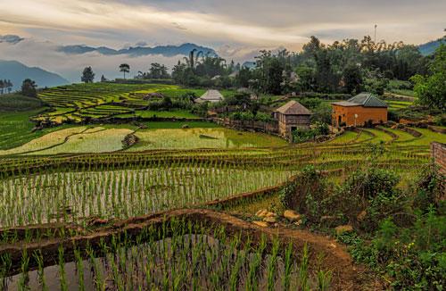 Dang hinh anh Phat trien cong dong tai khu vuc nong thon Viet Nam Phat trien ben vung - Phát triển cộng đồng tại khu vực nông thôn Việt Nam
