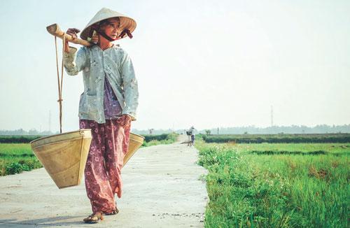 Dang hinh anh Phat trien cong dong tai khu vuc nong thon Viet Nam Tiep can nguon von ho tro - Phát triển cộng đồng tại khu vực nông thôn Việt Nam